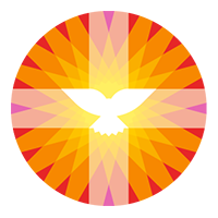 pkn_logo